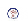 Banqobi Consulting
